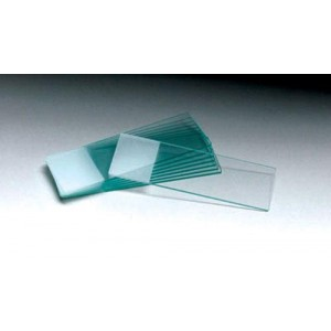 Microscope Slides - 1/4 Frosted Pack/72