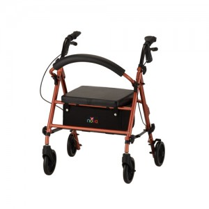 Journey Rolling Walker Orange