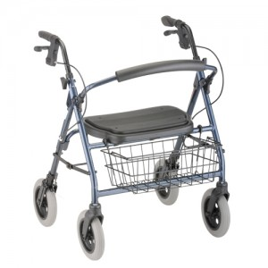 Mini Mack Rolling Walker Blue