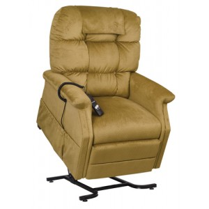 Lift Chair-Traditional Series Cambridge -Small/Medium