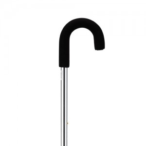 Cane Curved Handle Silver